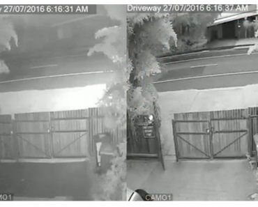 CCTV-Screenshots-Showing-Closed-and-Open-Gate.jpg